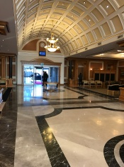 Airport VIP Lounge...